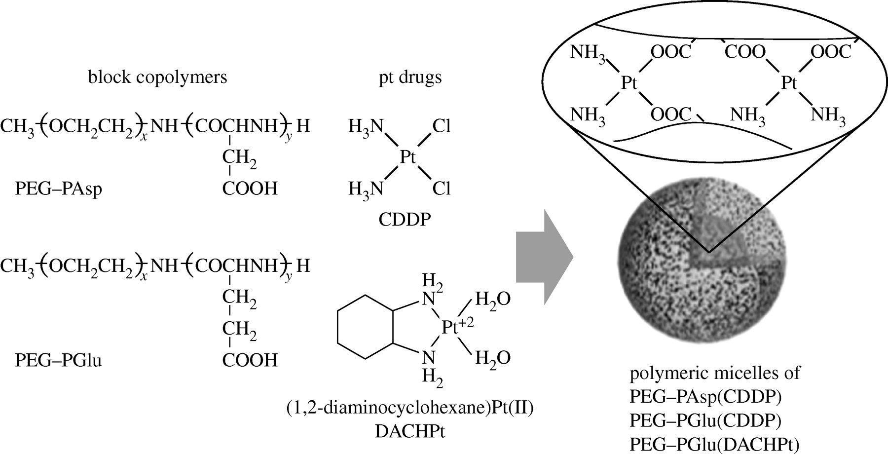 Polymeric micelles from poly(ethylene glycol)–poly(amino