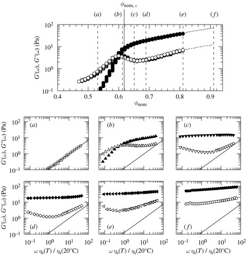 Multiple dynamic regimes in concentrated microgel systems
