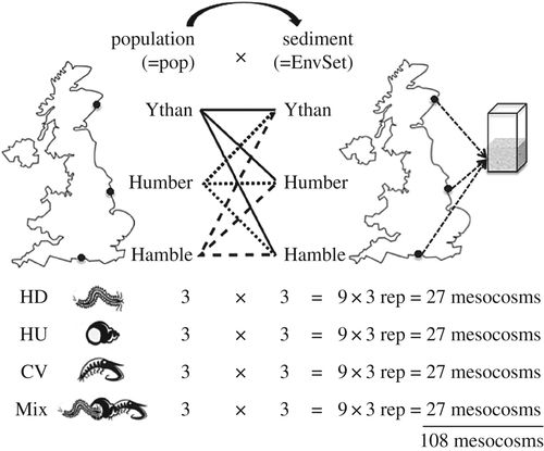 Species Contributions To Ecosystem Process And Function Can