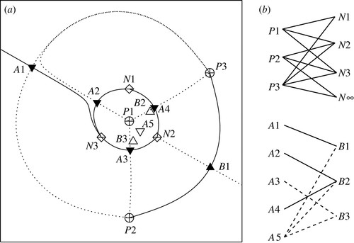 A Topological Analysis Of The Magnetic Breakout Model For An