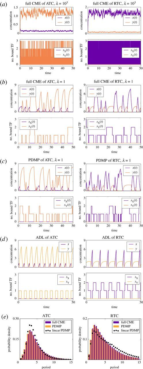 Efficient analysis of stochastic gene dynamics in the non