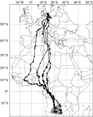 Converging Migration Routes Of Eurasian Hobbies Ifalco Subbuteoi