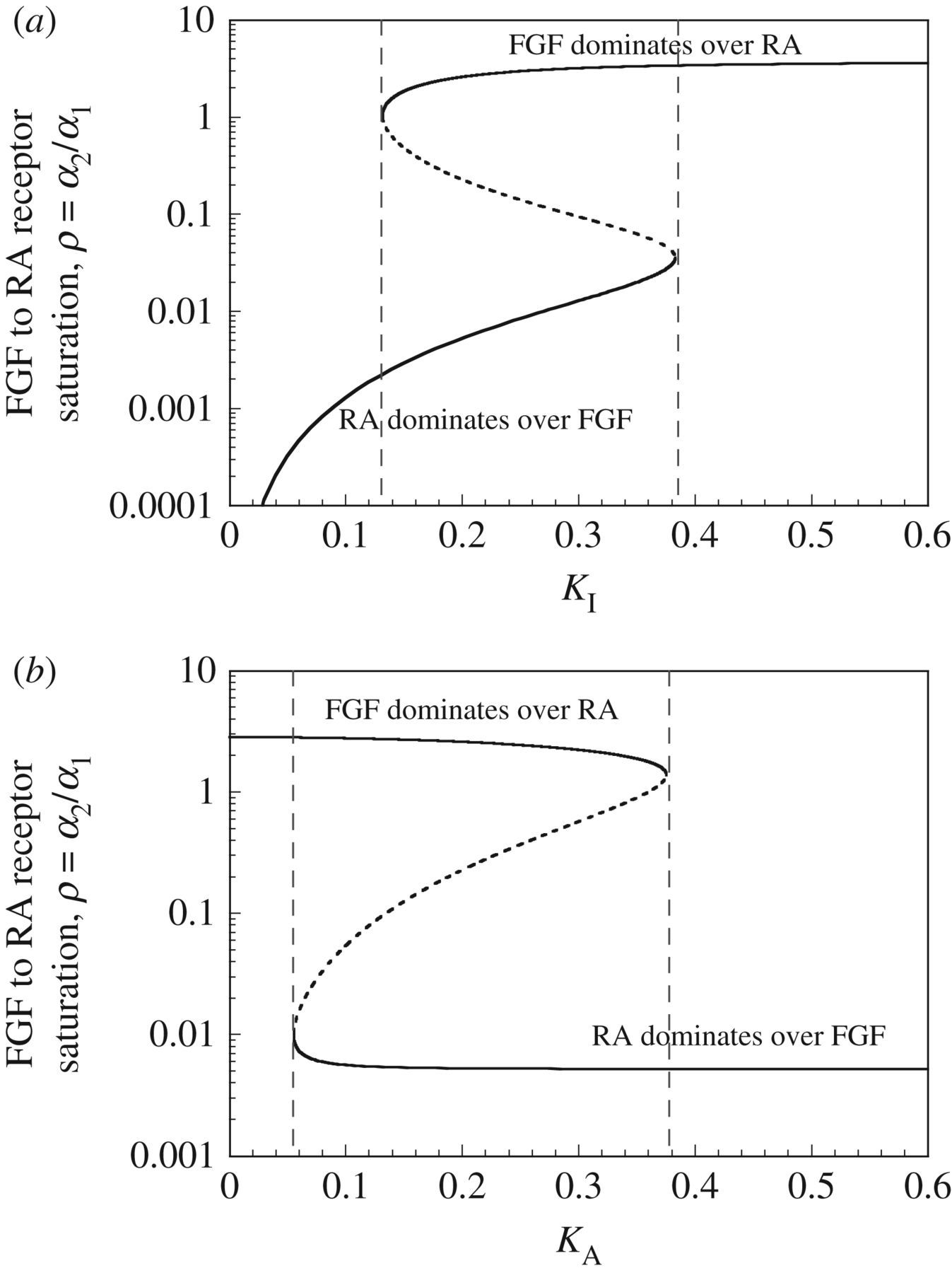 Dissipative structures in biological systems: bistability