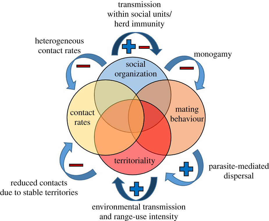 Behavioural ecology and infectious disease: implications for