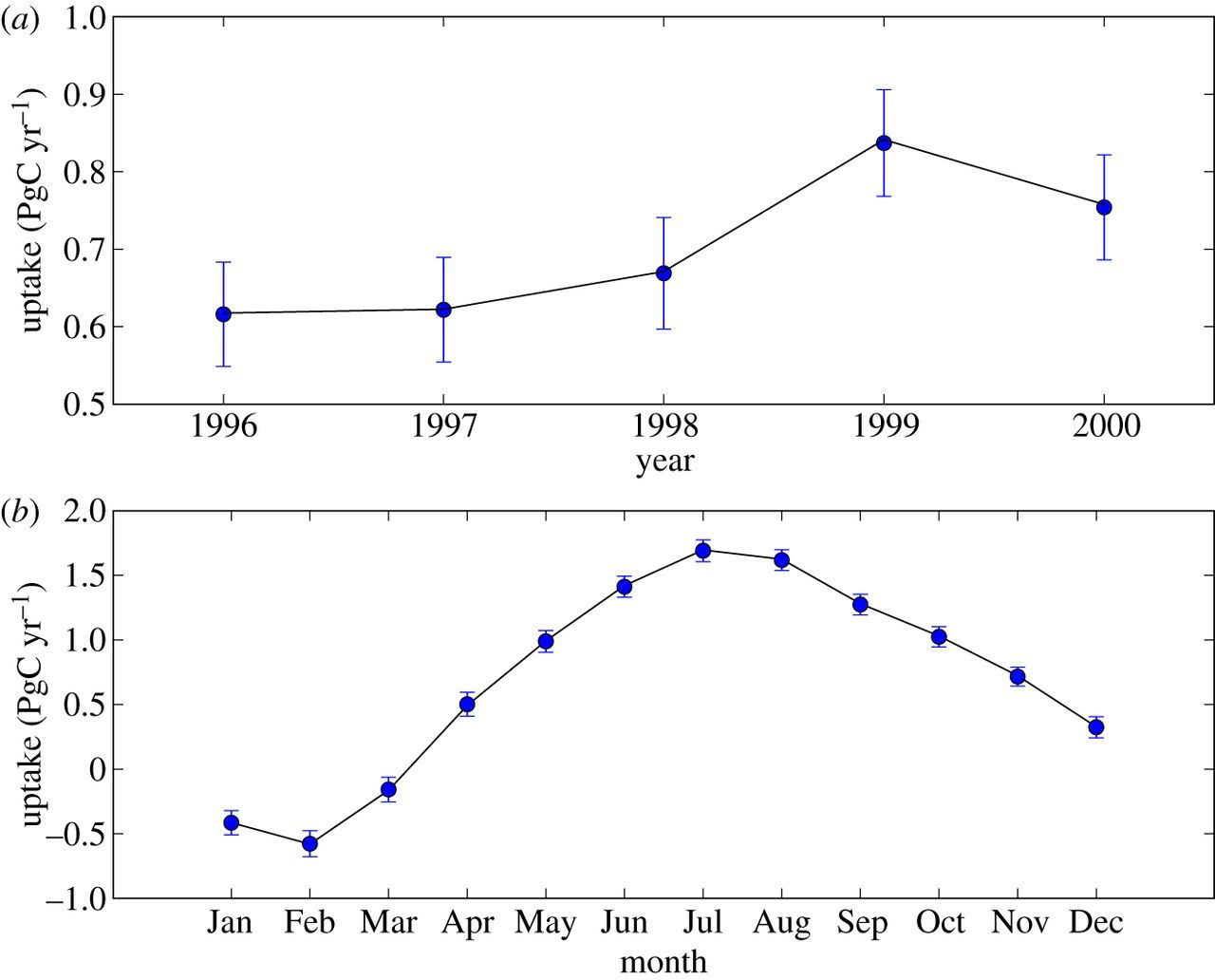 An observing system simulation for Southern Ocean carbon dioxide