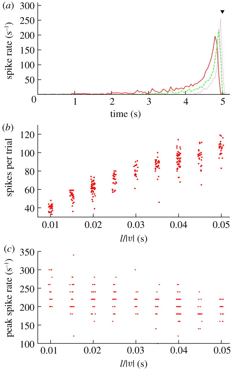A formal mathematical framework for physiological observations
