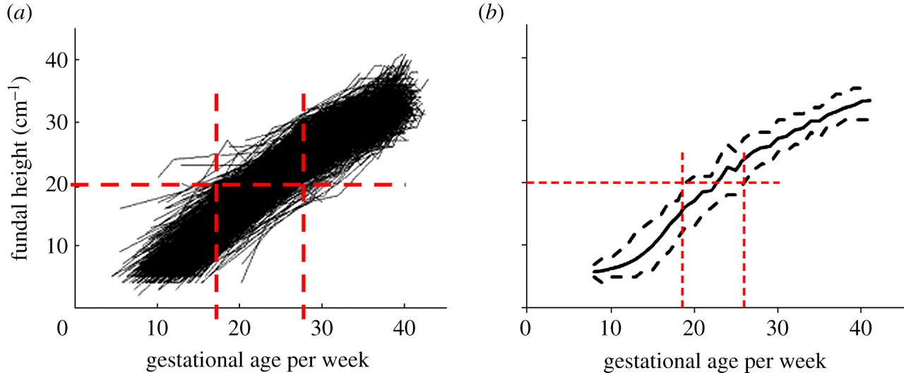 Estimation of gestational age from fundal height: a solution for