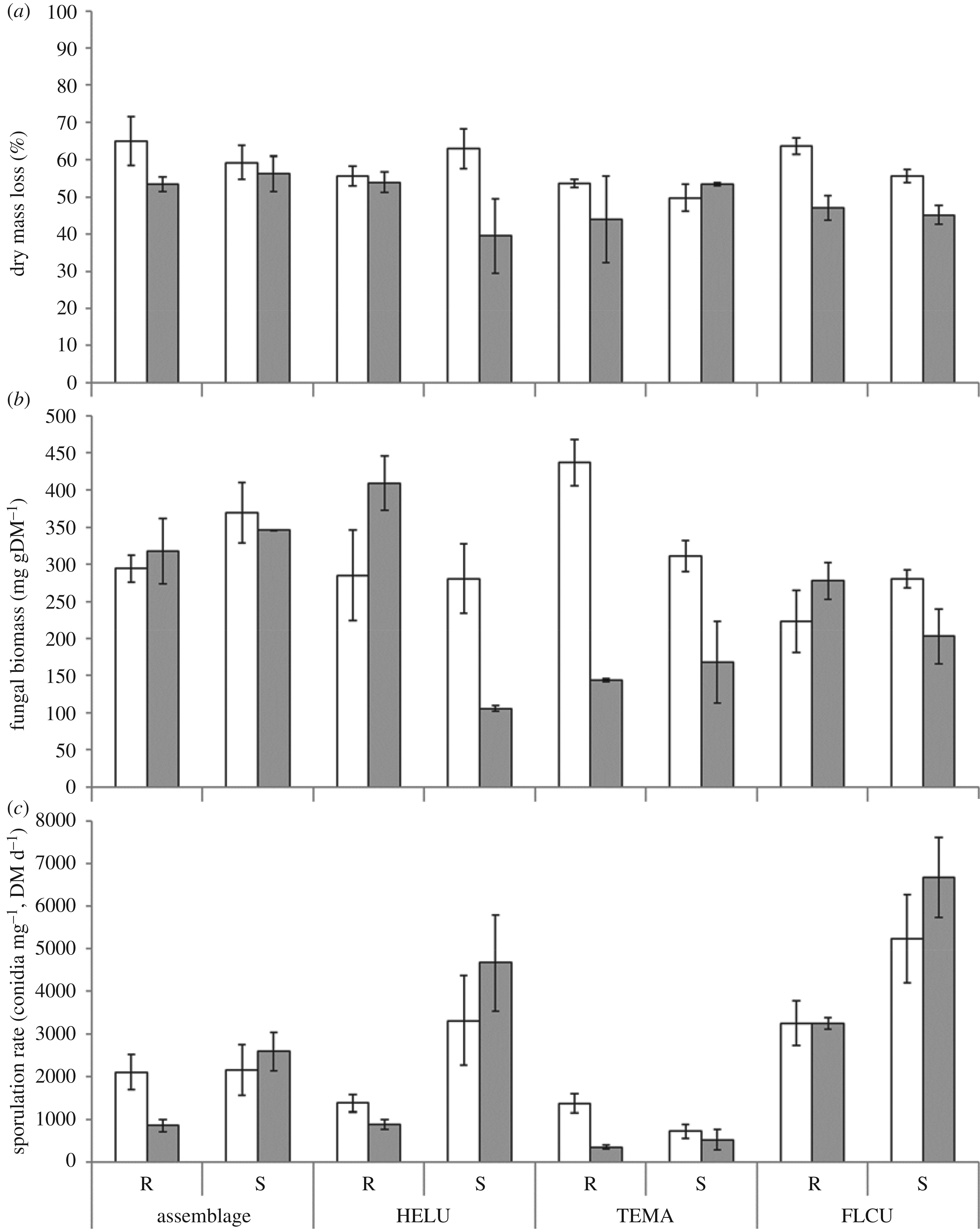 Are fungal strains from salinized streams adapted to salt