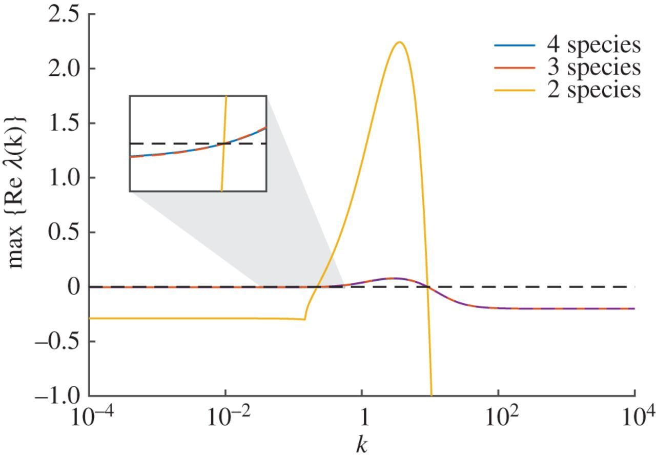 Model reduction enables Turing instability analysis of large