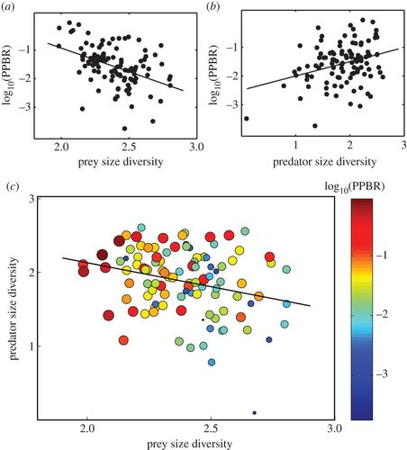 Prey size diversity hinders biomass trophic transfer and