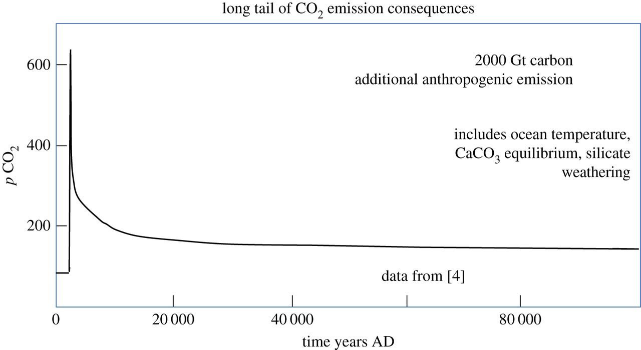 Negative emissions technologies and carbon capture and storage to