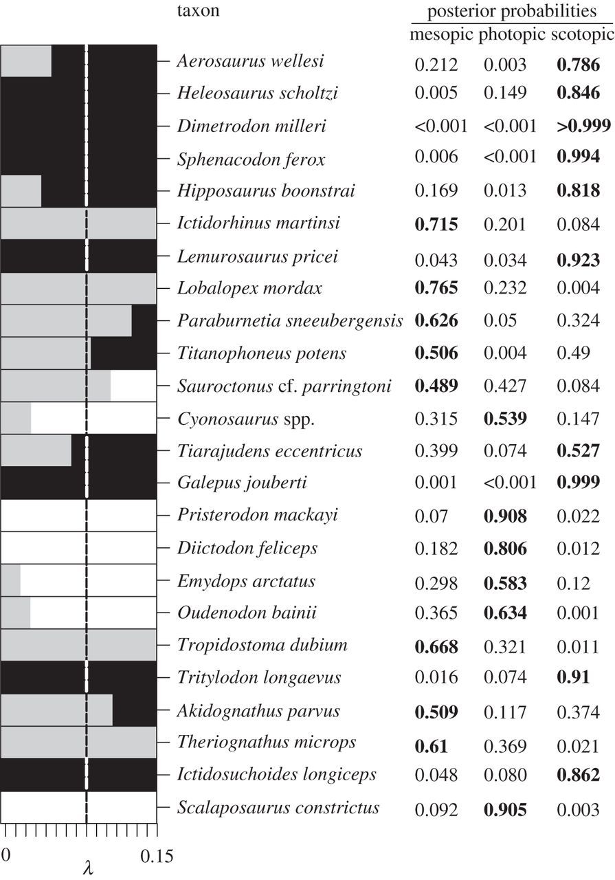 Nocturnality in synapsids predates the origin of mammals by over 100