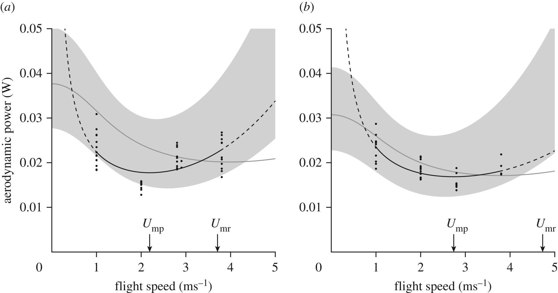 The power–speed relationship is U-shaped in two free-flying
